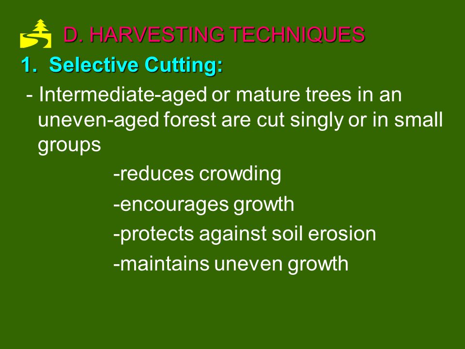 2.UnEven-Aged Management: -Trees are kept at a variety of ages and sizes.