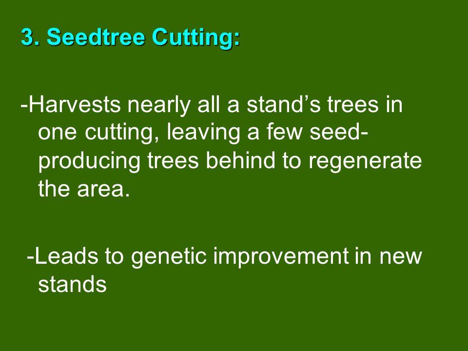 Shelterwood Cutting Cut 1 Cut 2
