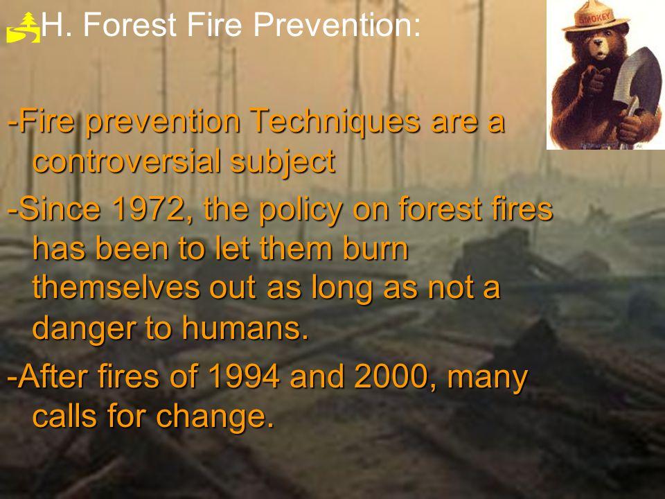 3.Ground Fires- 3.