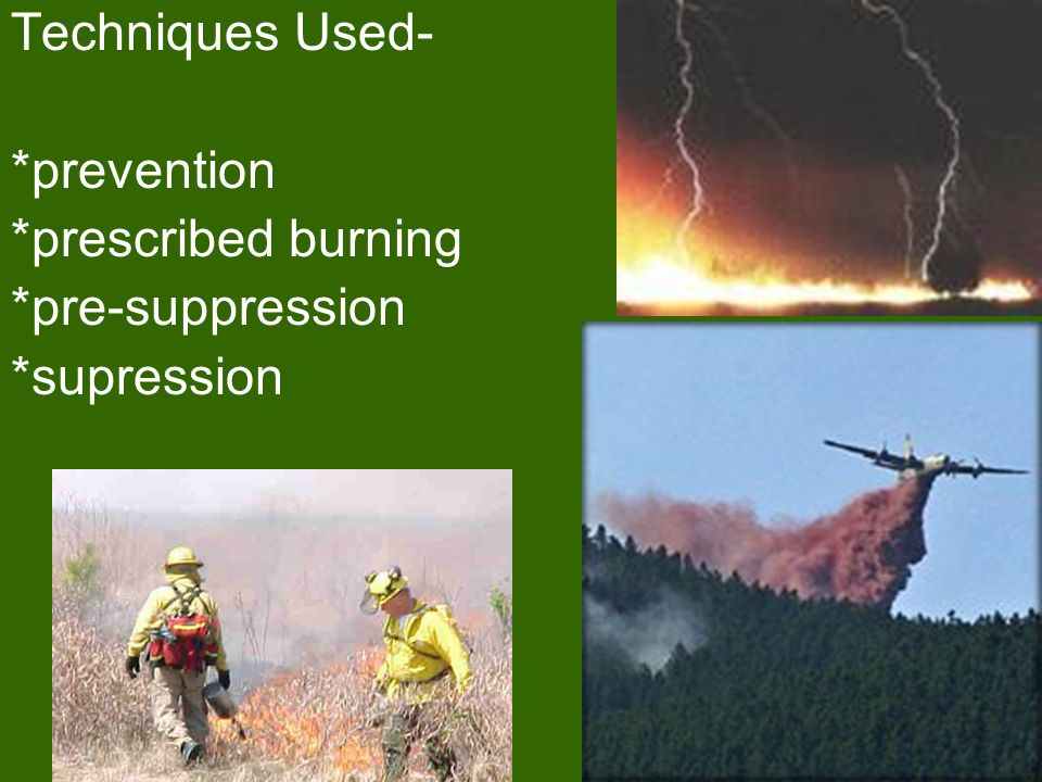 H. Forest Fire Prevention: -Fire prevention Techniques are a controversial subject -Since 1972, the policy on forest fires has been to let them burn t