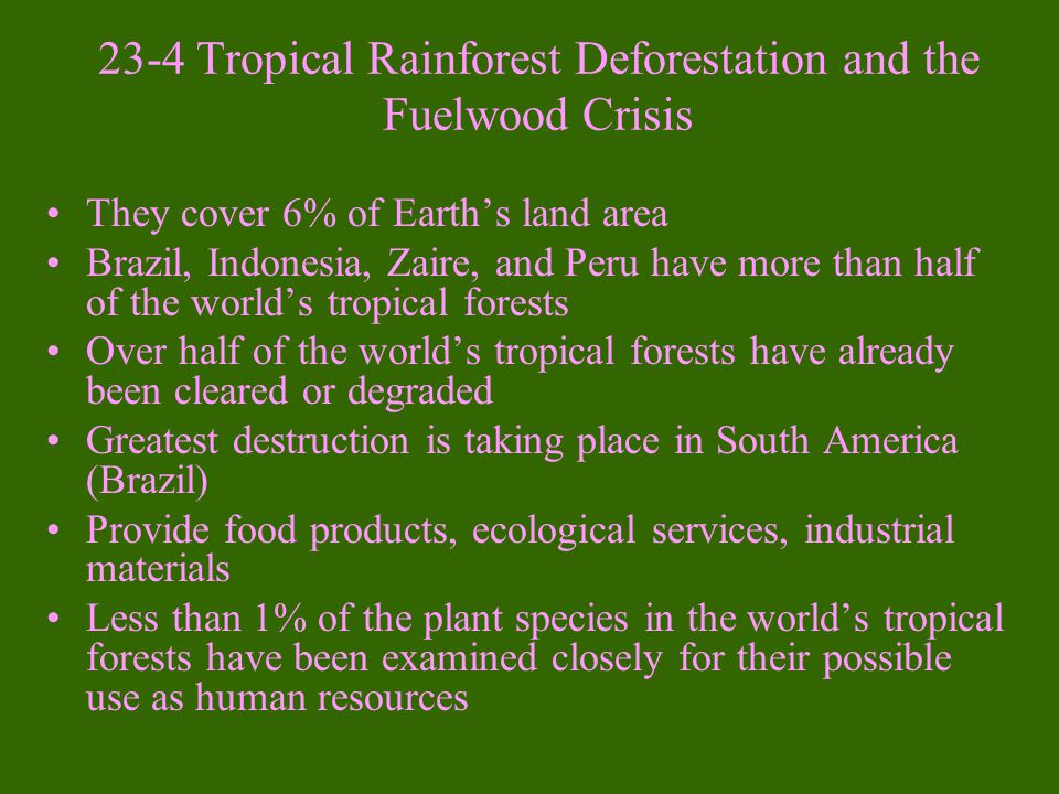 3. How To Reduce Tree Needs -Increase the efficiency of wood use -Increase paper recycling -Use fibers that do not come from trees for paper (Kenaf)
