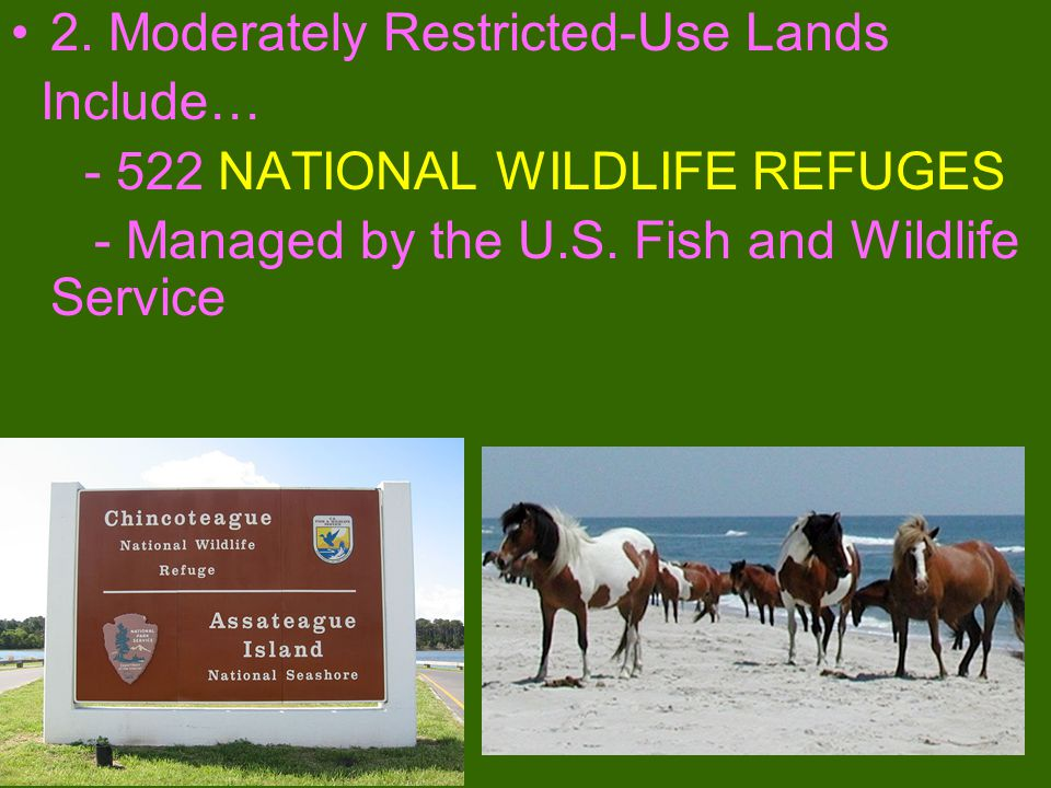 1. Multiple-Use Lands Include… - 155 Forests and 20 Grasslands of the NATIONAL FOREST SYSTEM -Managed by the U.S. FOREST SERVICE and - NATIONAL RESOUR