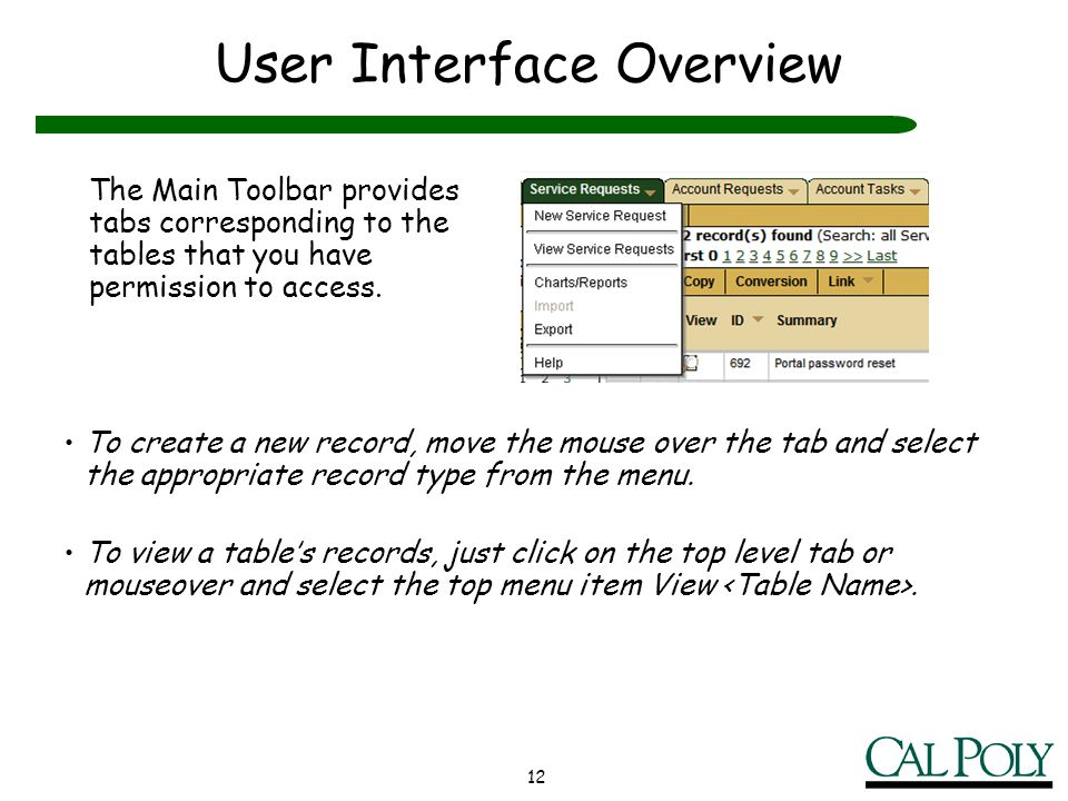 12 User Interface Overview The Main Toolbar provides tabs corresponding to the tables that you have permission to access. To create a new record, move