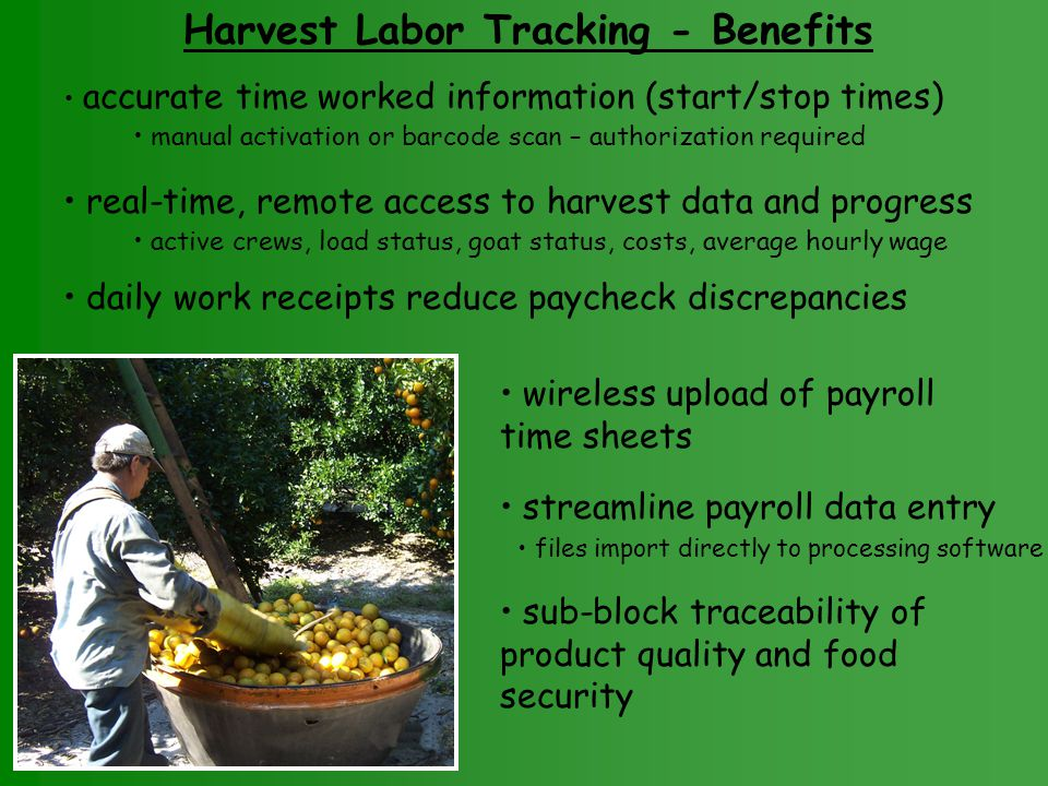 Harvest Labor Tracking - Benefits accurate time worked information (start/stop times) manual activation or barcode scan – authorization required real-time, remote access to harvest data and progress active crews, load status, goat status, costs, average hourly wage daily work receipts reduce paycheck discrepancies wireless upload of payroll time sheets sub-block traceability of product quality and food security streamline payroll data entry files import directly to processing software
