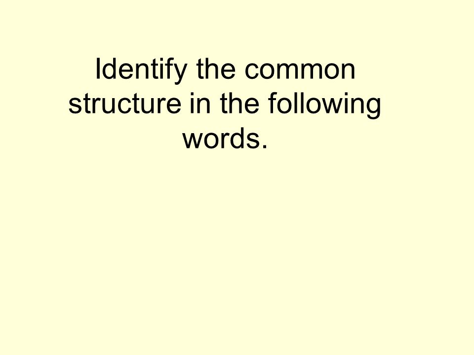 Define each word based on its prefix and root.