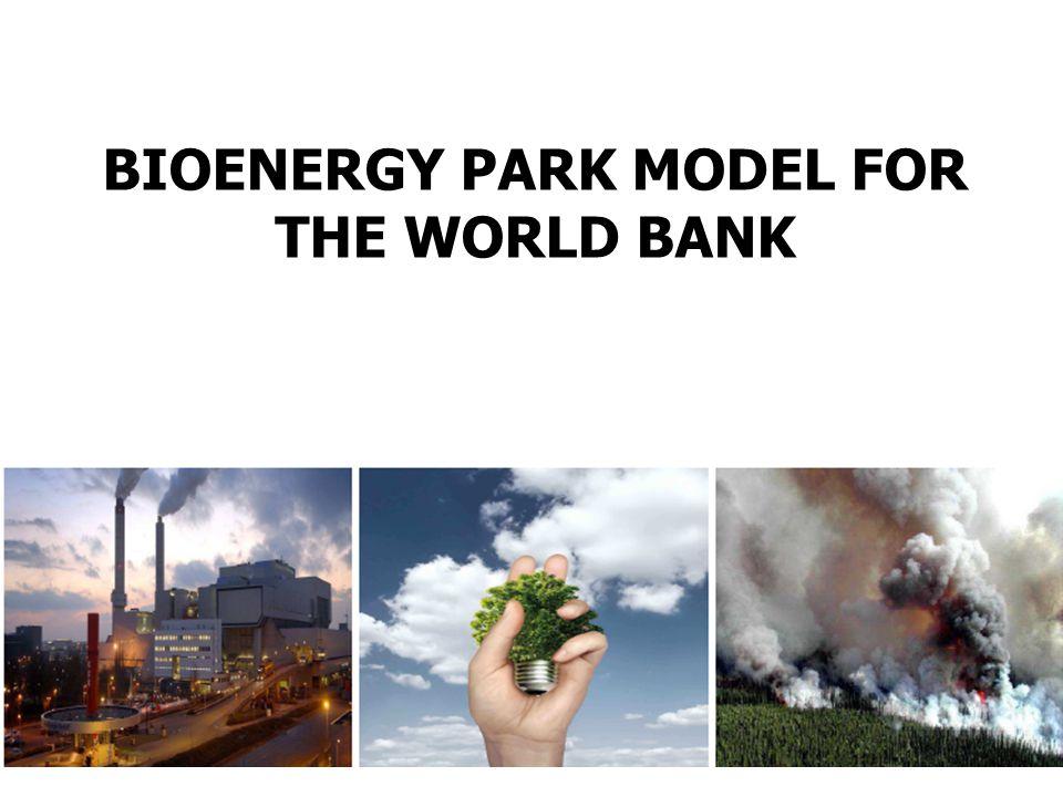 BIOENERGY PARK MODEL FOR THE WORLD BANK