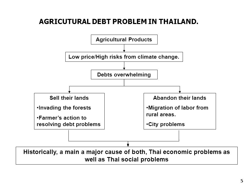 AGRICUTURAL DEBT PROBLEM IN THAILAND. Agricultural Products Low price/High risks from climate change. Debts overwhelming Sell their lands Invading the