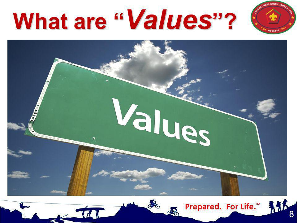 8 What are Values ?