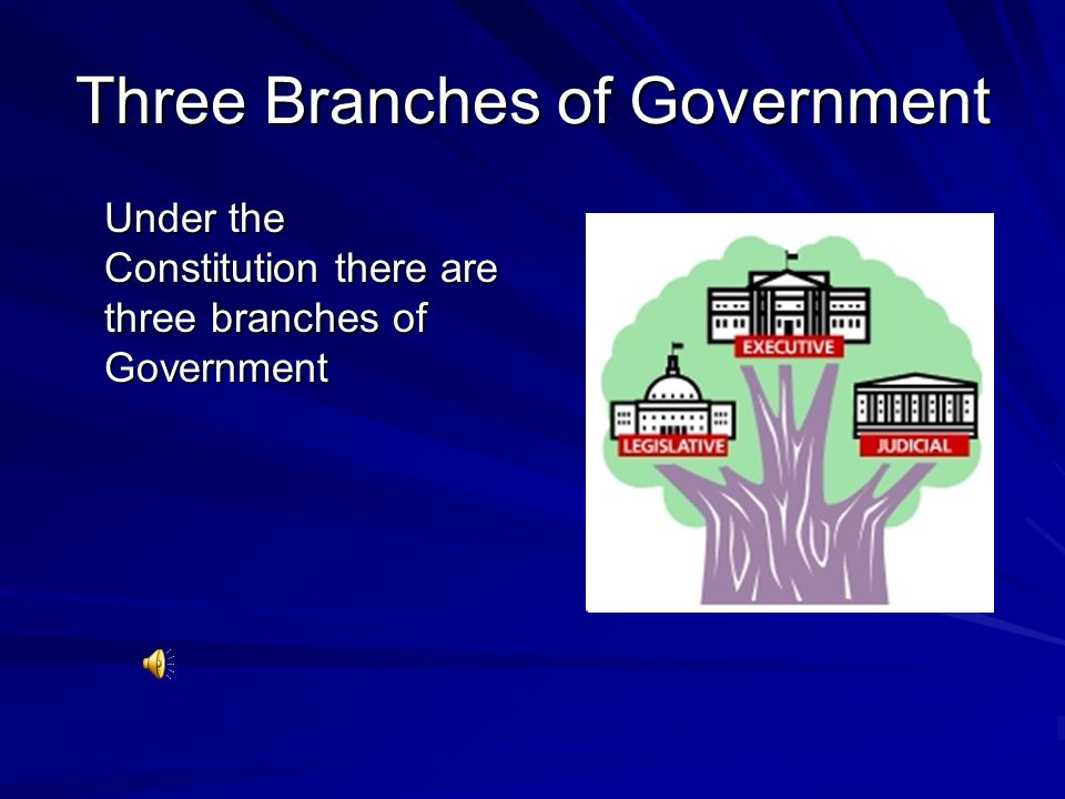 Three Branches of Government Under the Constitution there are three branches of Government
