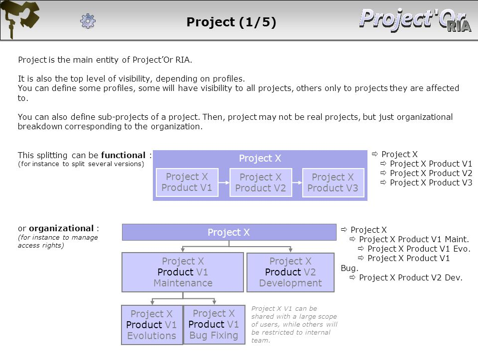 Project (1/5) Project is the main entity of ProjectOr RIA. It is also the top level of visibility, depending on profiles. You can define some profiles
