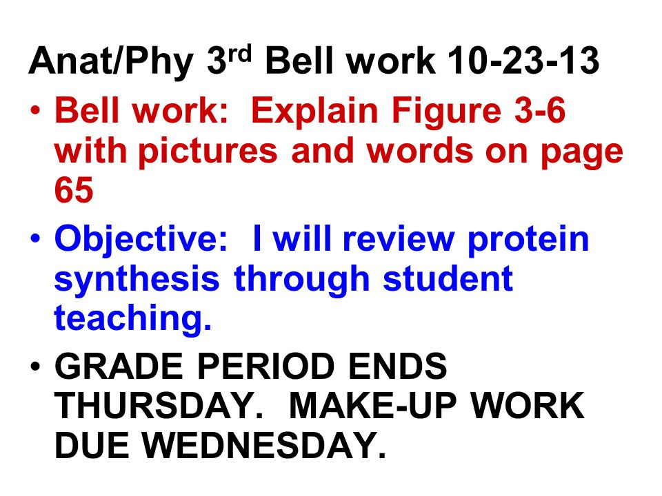 Anat/Phy 3 rd Bell work Bell work: Explain Figure 3-6 with pictures and words on page 65 Objective: I will review protein synthesis through student teaching.