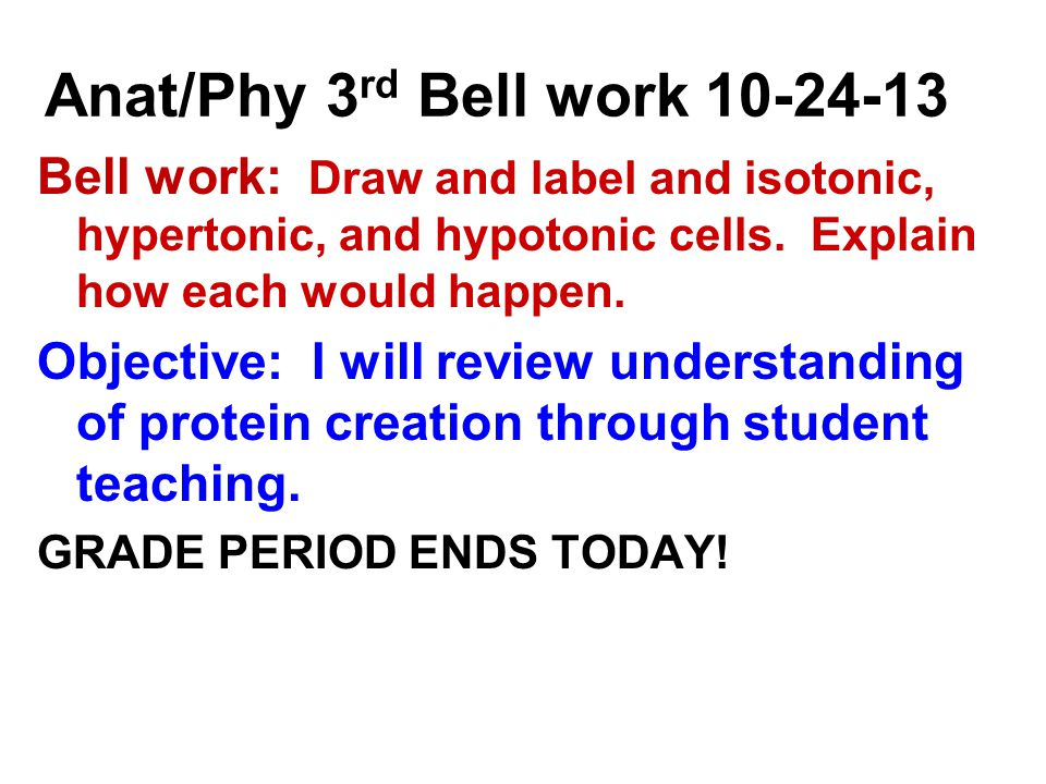 Anat/Phy 3 rd Bell work Bell work: Draw and label and isotonic, hypertonic, and hypotonic cells.