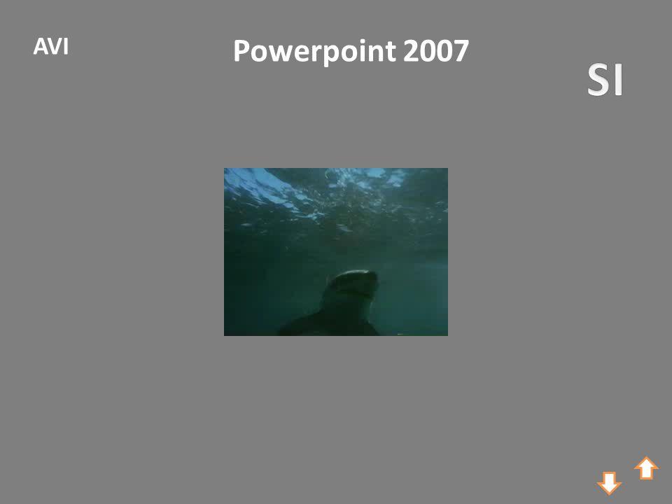 Powerpoint 2007 AVI