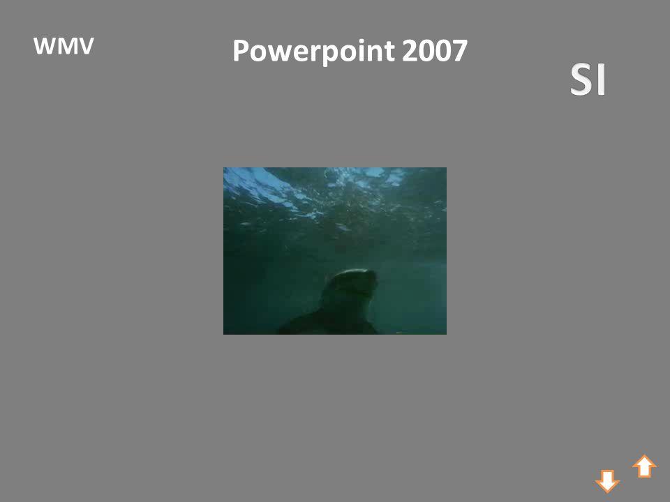 Powerpoint 2007 WMV