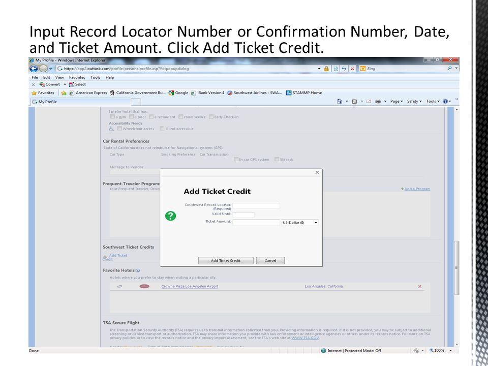 Input Record Locator Number or Confirmation Number, Date, and Ticket Amount.