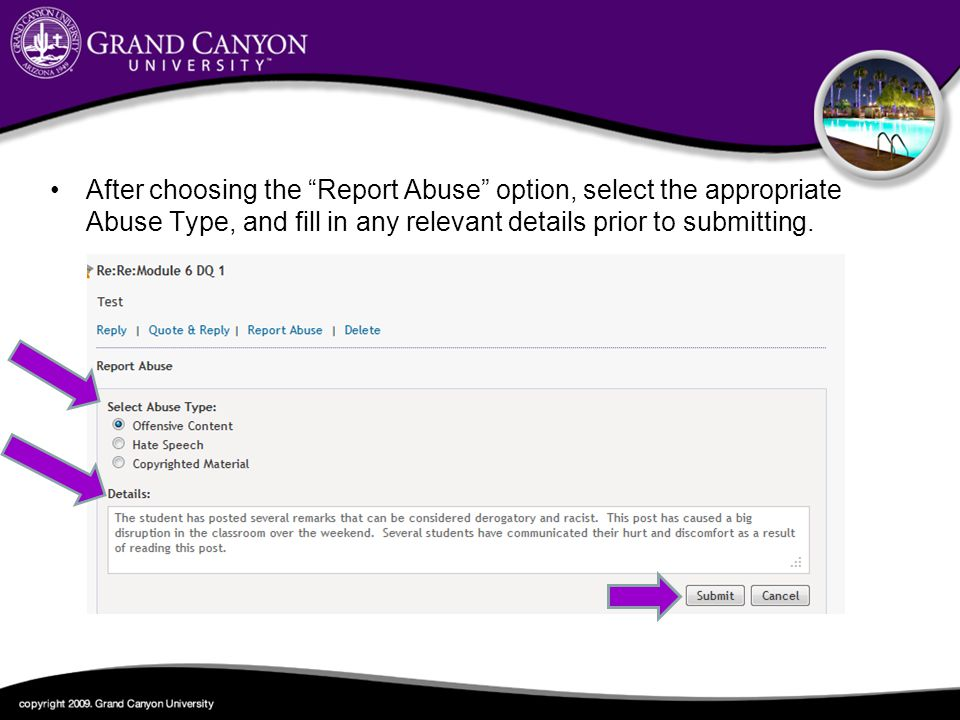 After choosing the Report Abuse option, select the appropriate Abuse Type, and fill in any relevant details prior to submitting.