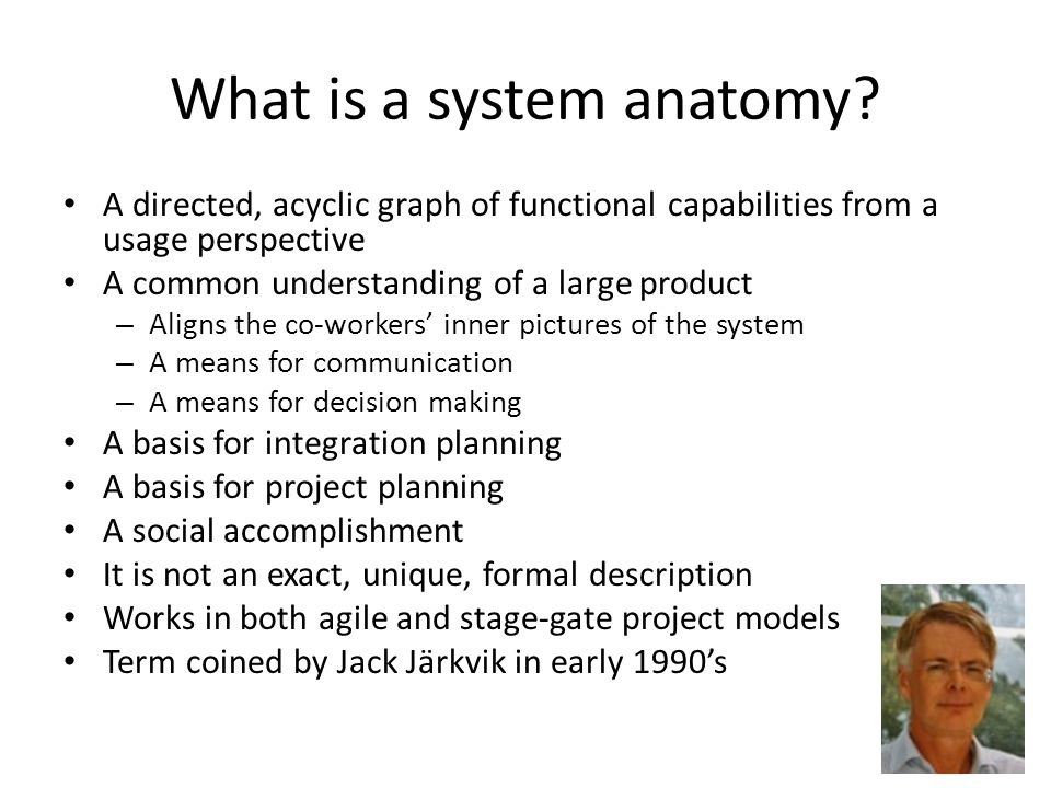 What is a system anatomy.