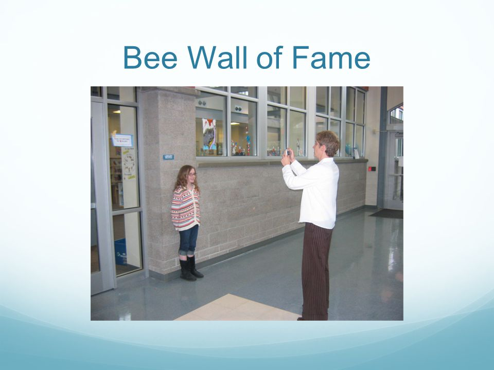 Bee Wall of Fame