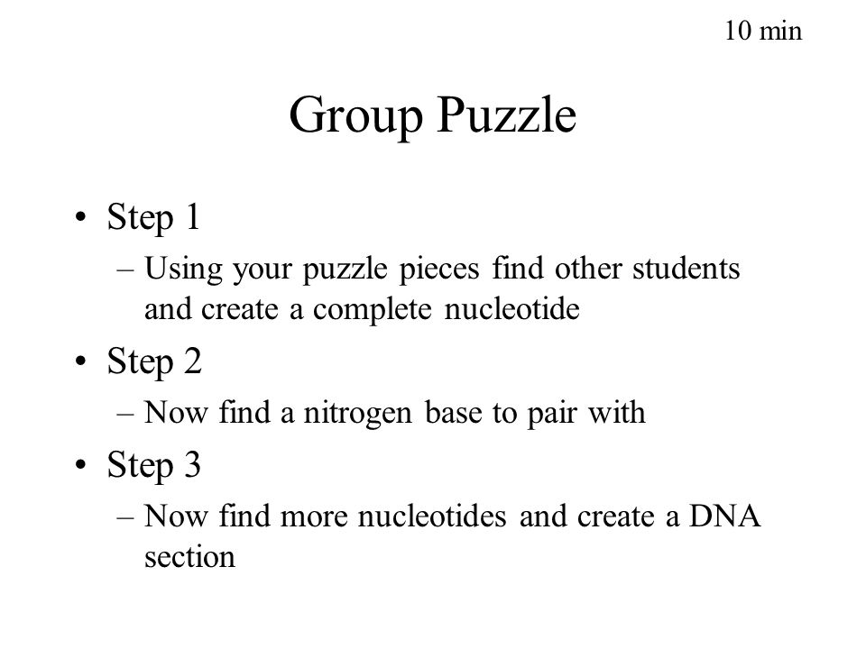 Group Puzzle Step 1 –Using your puzzle pieces find other students and create a complete nucleotide Step 2 –Now find a nitrogen base to pair with Step 3 –Now find more nucleotides and create a DNA section 10 min
