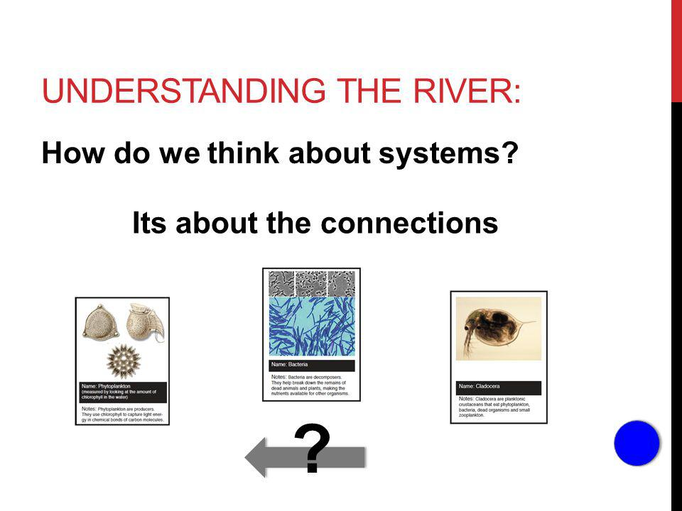 UNDERSTANDING THE RIVER: How do we think about systems Its about the connections