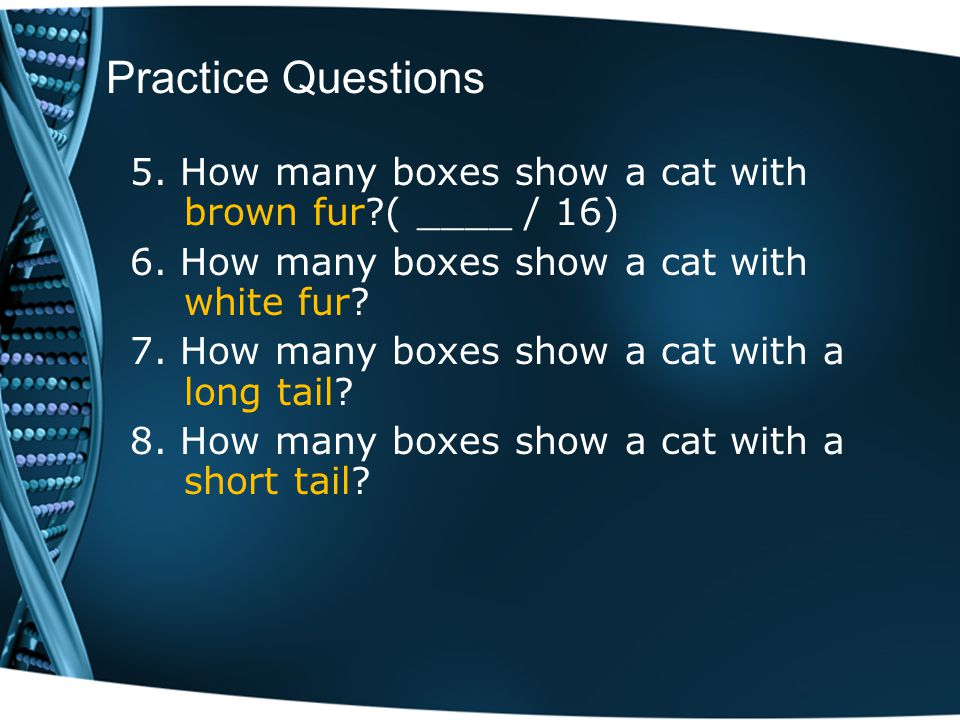 Practice Questions 5. How many boxes show a cat with brown fur?( ____ / 16) 6. How many boxes show a cat with white fur? 7. How many boxes show a cat