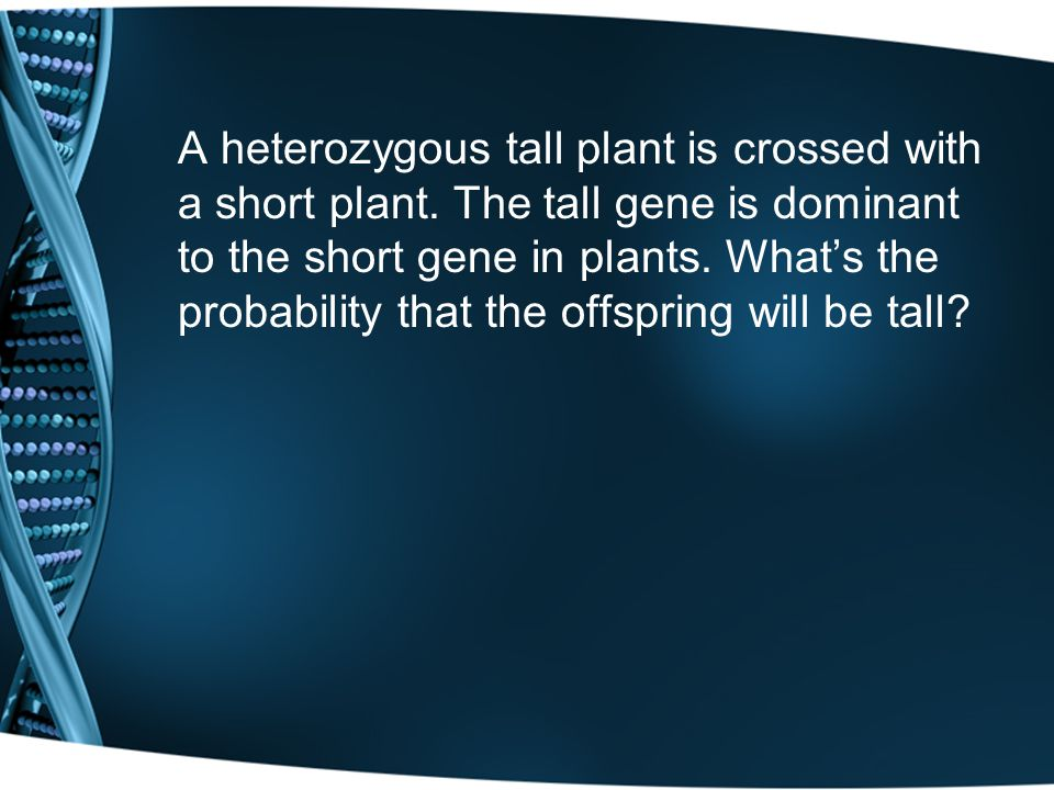 A heterozygous tall plant is crossed with a short plant. The tall gene is dominant to the short gene in plants. Whats the probability that the offspri