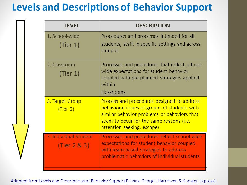 Levels and Descriptions of Behavior Support LEVELDESCRIPTION 1. School-wide (Tier 1) Procedures and processes intended for all students, staff, in spe