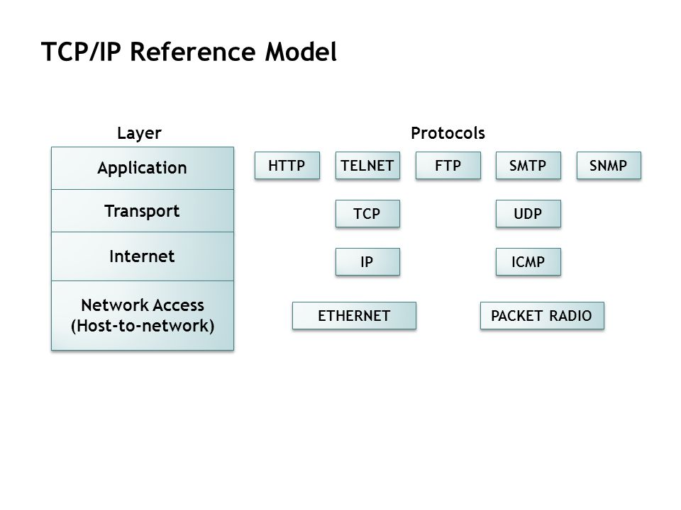 TCP/IP Reference Model Application Transport Internet Network Access (Host-to-network) Layer HTTP TELNET FTP SMTP SNMP Protocols TCP UDP IP ICMP ETHER