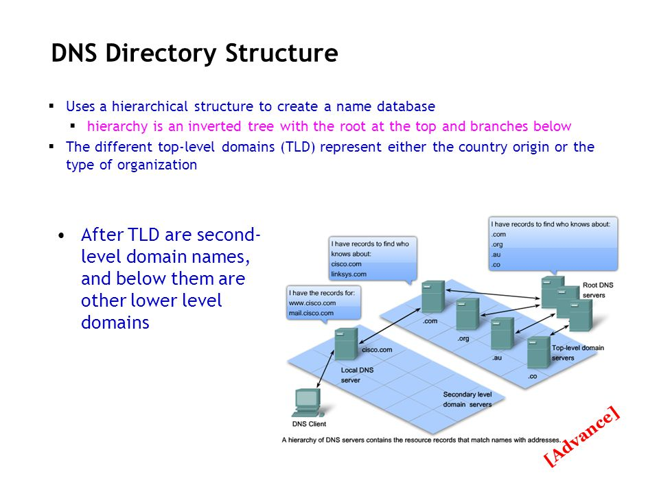 DNS Directory Structure Uses a hierarchical structure to create a name database hierarchy is an inverted tree with the root at the top and branches be