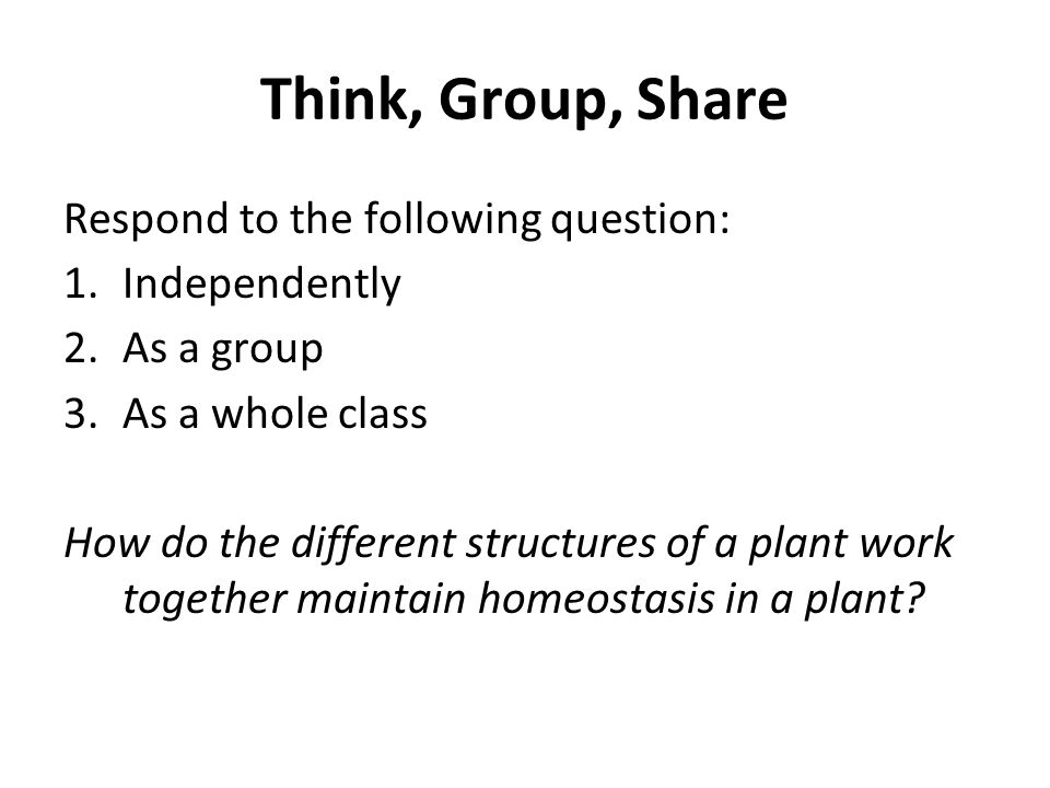Think, Group, Share Respond to the following question: 1.Independently 2.As a group 3.As a whole class How do the different structures of a plant work