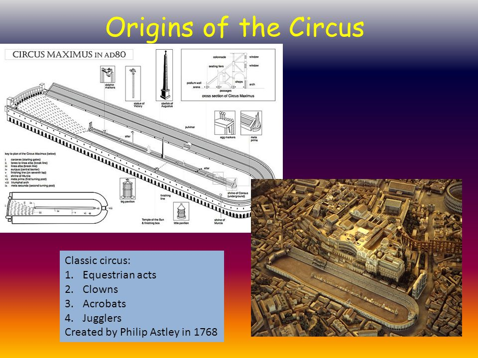 Origins of the Circus Classic circus: 1.Equestrian acts 2.Clowns 3.Acrobats 4.Jugglers Created by Philip Astley in 1768