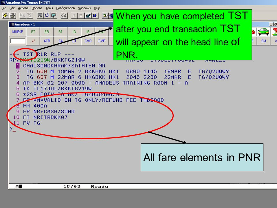 All fare elements in PNR When you have completed TST after you end transaction TST will appear on the head line of PNR.