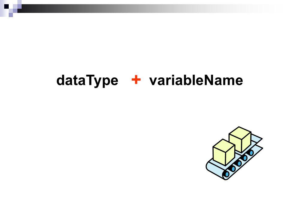 variableNamedataType +