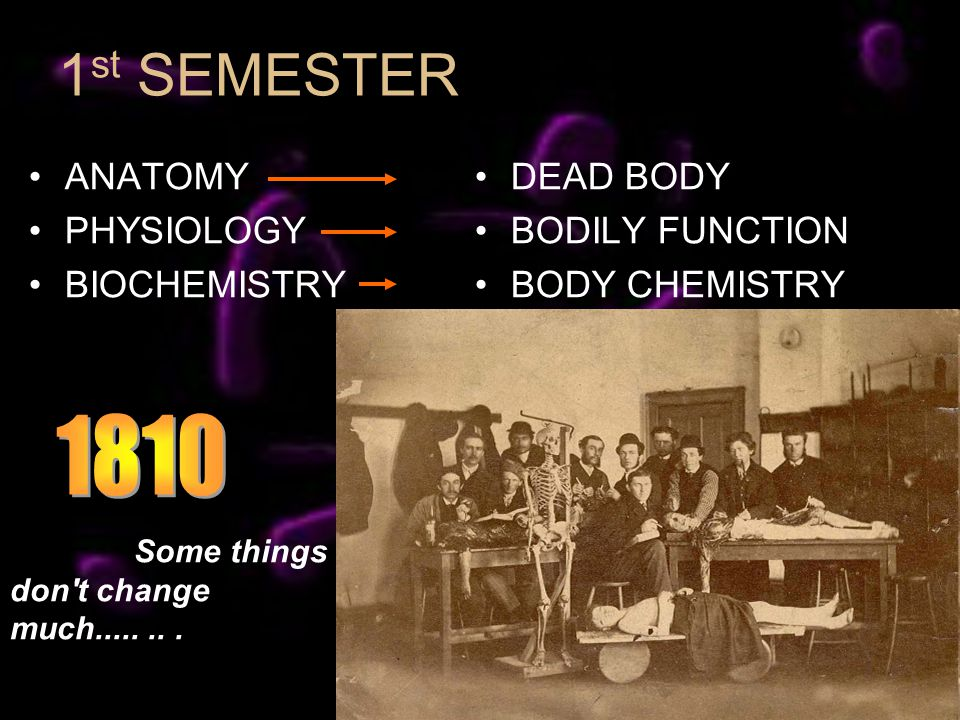 1 st SEMESTER ANATOMY PHYSIOLOGY BIOCHEMISTRY DEAD BODY BODILY FUNCTION BODY CHEMISTRY Some things don t change much........