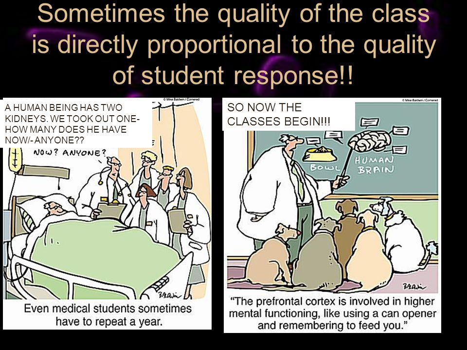 Sometimes the quality of the class is directly proportional to the quality of student response!! SO NOW THE CLASSES BEGIN!!! A HUMAN BEING HAS TWO KID