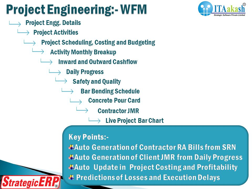 Project Engg. Details Project Activities Project Scheduling, Costing and Budgeting Activity Monthly Breakup Inward and Outward Cashflow Daily Progress