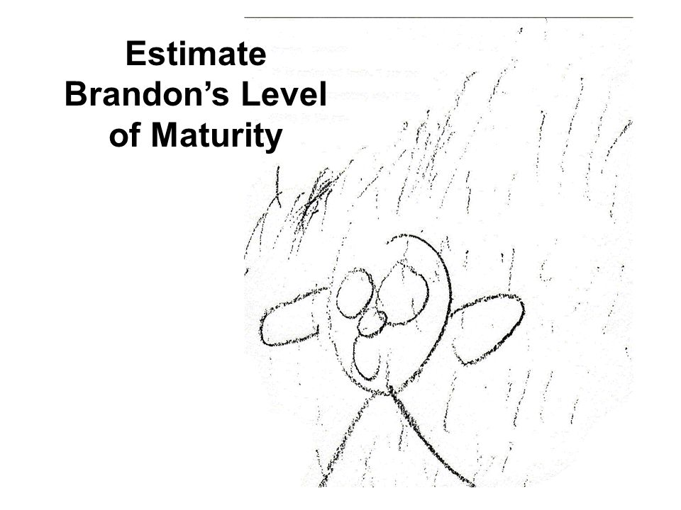 Estimate Brandons Level of Maturity