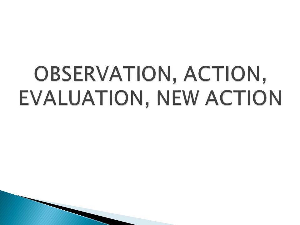 OBSERVATION, ACTION, EVALUATION, NEW ACTION