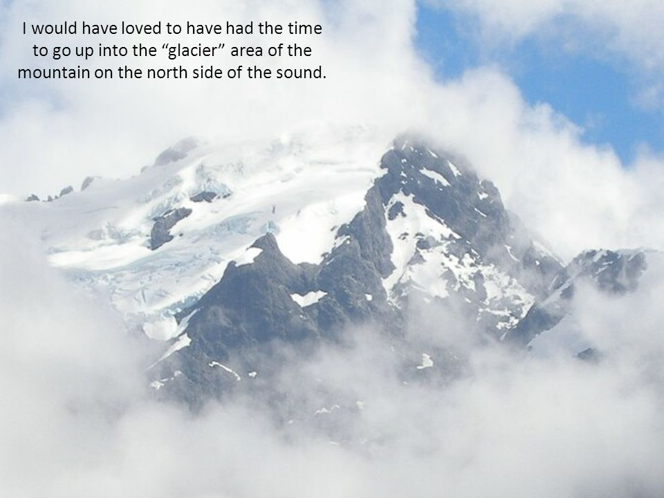I would have loved to have had the time to go up into the glacier area of the mountain on the north side of the sound.