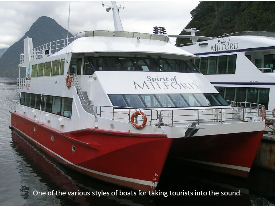 One of the various styles of boats for taking tourists into the sound.