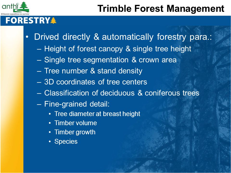Trimble Forest Management Drived directly & automatically forestry para.: –Height of forest canopy & single tree height –Single tree segmentation & cr