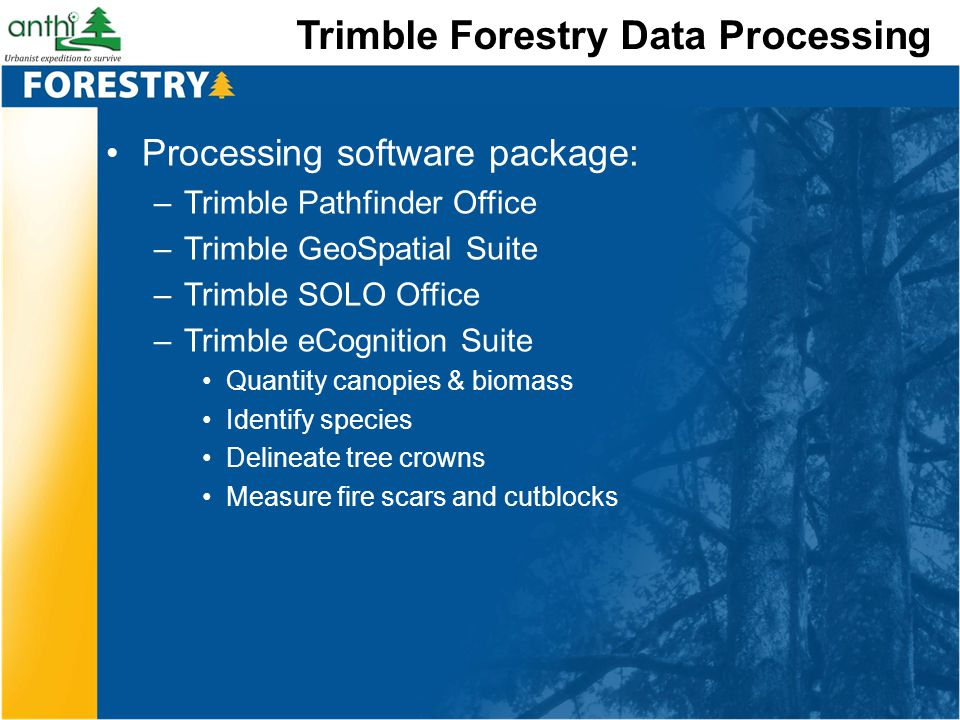 Trimble Forestry Data Processing Processing software package: –Trimble Pathfinder Office –Trimble GeoSpatial Suite –Trimble SOLO Office –Trimble eCogn