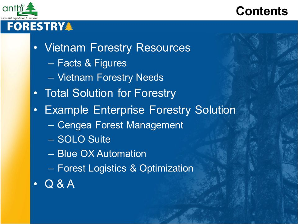 Contents Vietnam Forestry Resources –Facts & Figures –Vietnam Forestry Needs Total Solution for Forestry Example Enterprise Forestry Solution –Cengea