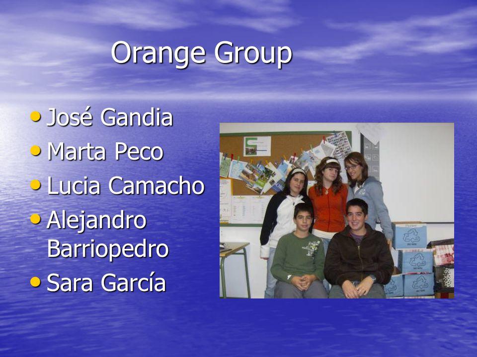 Orange Group Orange Group José Gandia Marta Peco Lucia Camacho Alejandro Barriopedro Sara García
