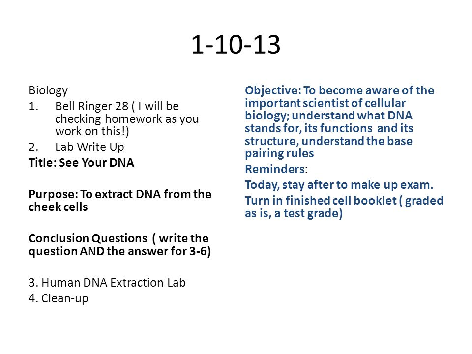 1-10-13 Biology 1.Bell Ringer 28 ( I will be checking homework as you work on this!) 2.Lab Write Up Title: See Your DNA Purpose: To extract DNA from the cheek cells Conclusion Questions ( write the question AND the answer for 3-6) 3.