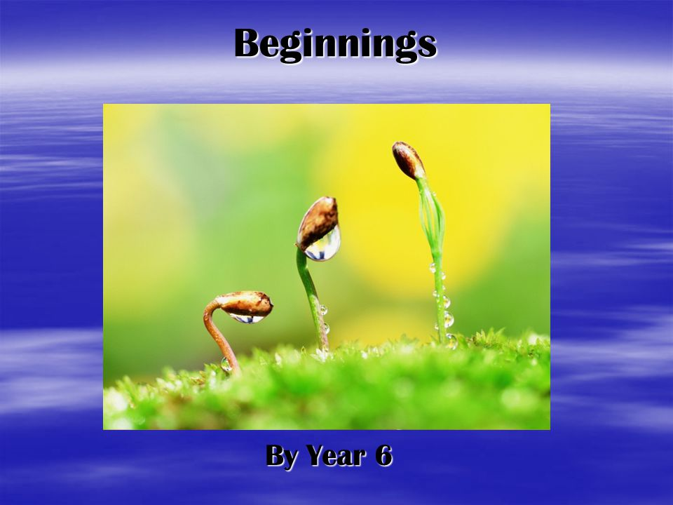 Beginnings By Year 6