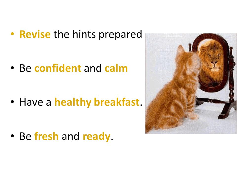 Revise the hints prepared Be confident and calm Have a healthy breakfast. Be fresh and ready.