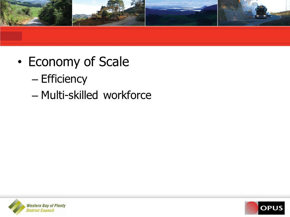 Economy of Scale – Efficiency – Multi-skilled workforce