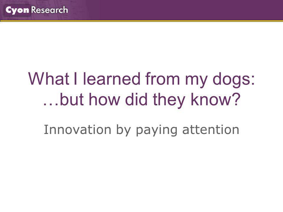 What I learned from my dogs: …but how did they know? Innovation by paying attention