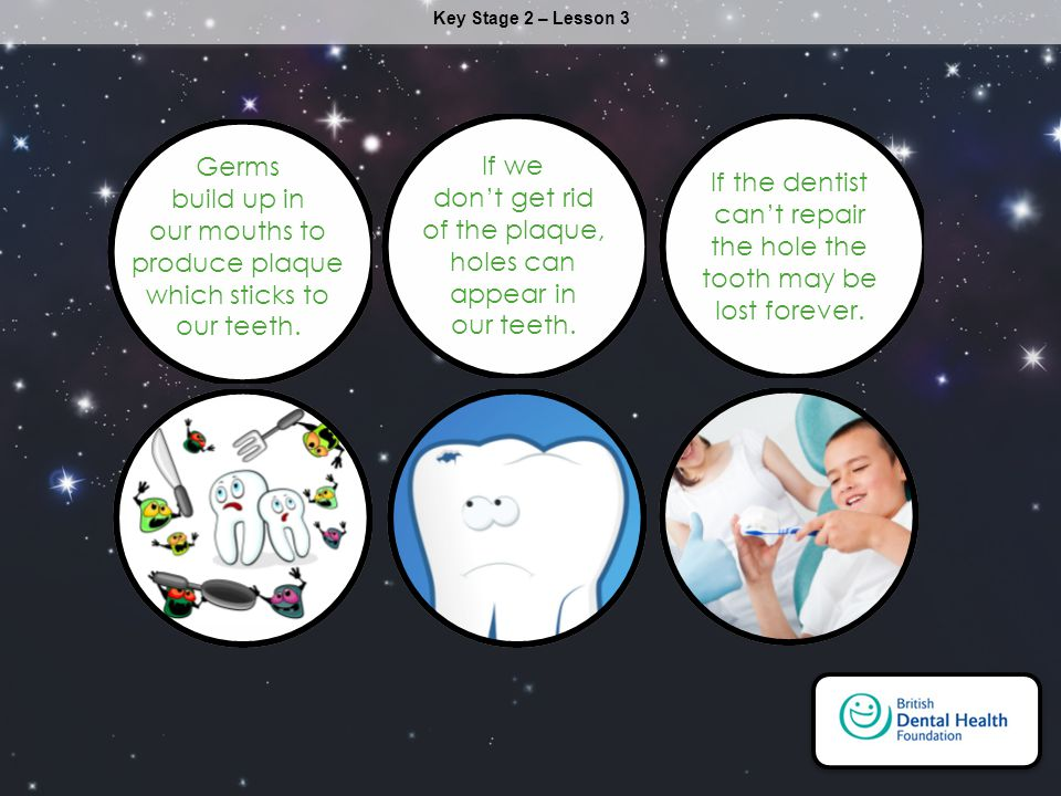 Key Stage 2 – Lesson 3 Germs build up in our mouths to produce plaque which sticks to our teeth.